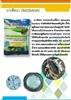 สารป้องกันและกำจัดโรคพืช