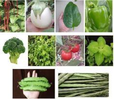 ชุดผักรวม นานา1