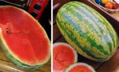 เมล็ดแตงโมตอปิโด 10 เมล็ด