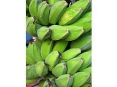 หน่อกล้วยหิน