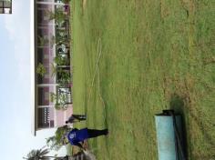 งานปูหญ้า