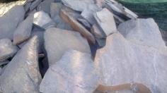 หินกาบดำเทา