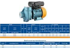 ปั๊มน้ำไฟฟ้า BRUNO (บรูโน่) 2นิ้ว x 2HP