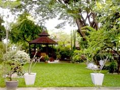 รับปูหญ้า จัดสวน ดูแลสวน  ตัดหญ้า
