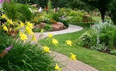 รับปลูกไม้ดอกไม้ประดับ ไม้ผล ไม้ยืนต้น ดูแลสวน จัดสวน