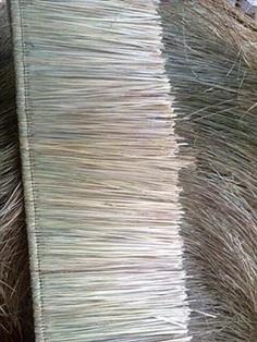 ขายไพหญ้าแฝกมุงหลังคา