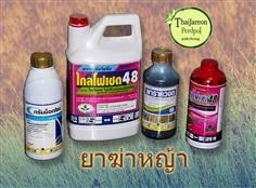 ยาฆ่าหญ้า สารเคมีกำจัดหญ้า