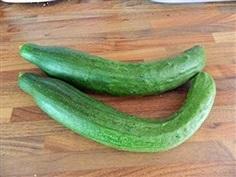 แตงกวาอิมพรูฟผลยาว - Improved Long Green Cucumber