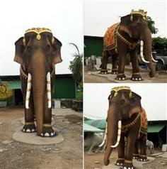 ช้างทรงเครื่อง มงคล