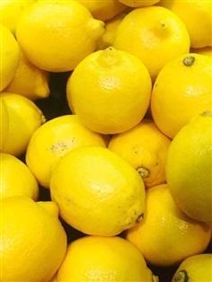 เลมอน มะนาวเหลือง Lemon