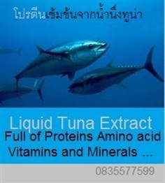 Liquid tuna extract