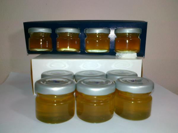 Wild Natural Honey 100% Pack4-1 oz.