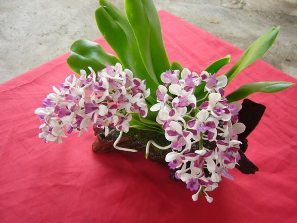 ดอกไม้ประดิษฐ์จากดินไทย(กล้วยไม้ไทย)
