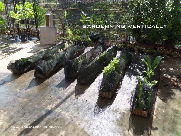 สวนแนวตั้งสำเร็จรูป  แนวใหม่