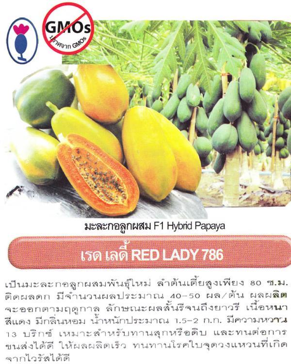 เมล็ดพันธุ์มะละกอ เรดเลดี้ 786