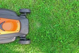 รับตัดหญ้า ตัดแต่งกิ่งไม้  ปูหญ้า จัดสวน ดูแลสวน