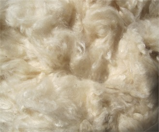 Kapok fiber for Mattress