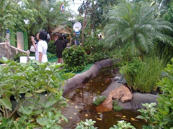 จัดสวนอีเว้นท์ ม็อคอัพ ต้นไม้ จัดสวนน้ำตก สวนป่า อีเว้นท์