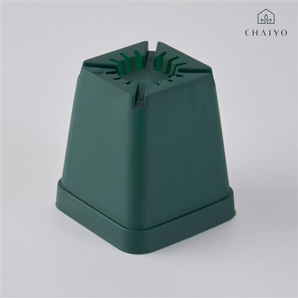 กระถางกระบองเพชร(Cactus pot)