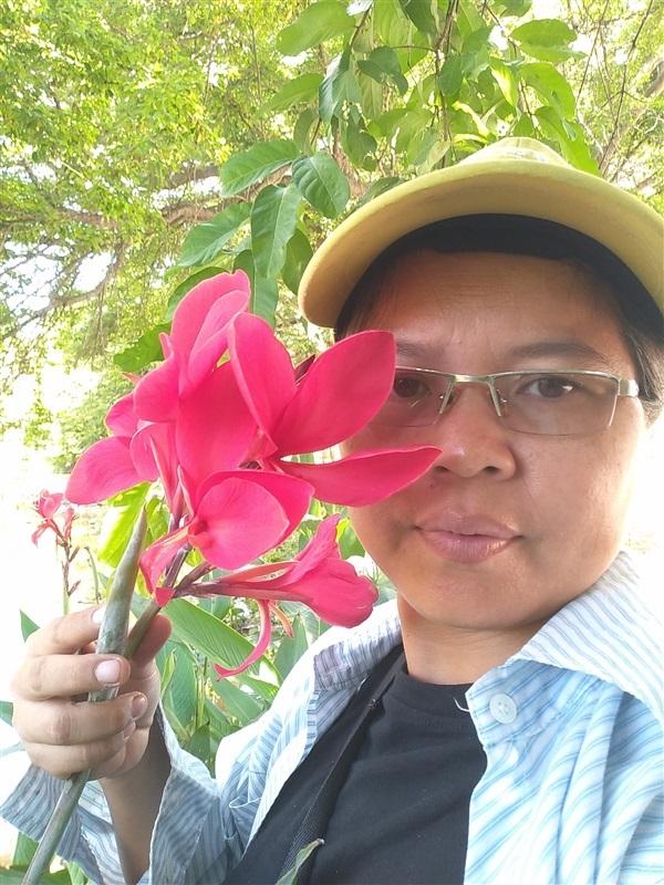 พุทธรักษา สีชมพู