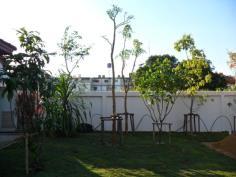 งานปลูกต้นไม้