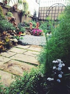 สวนสวยๆ
