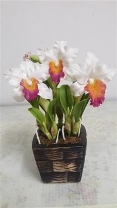 แคทรียา เล็ก ดอกไม้ประดิษฐ์  ทำจากดินญี่ปุ่น